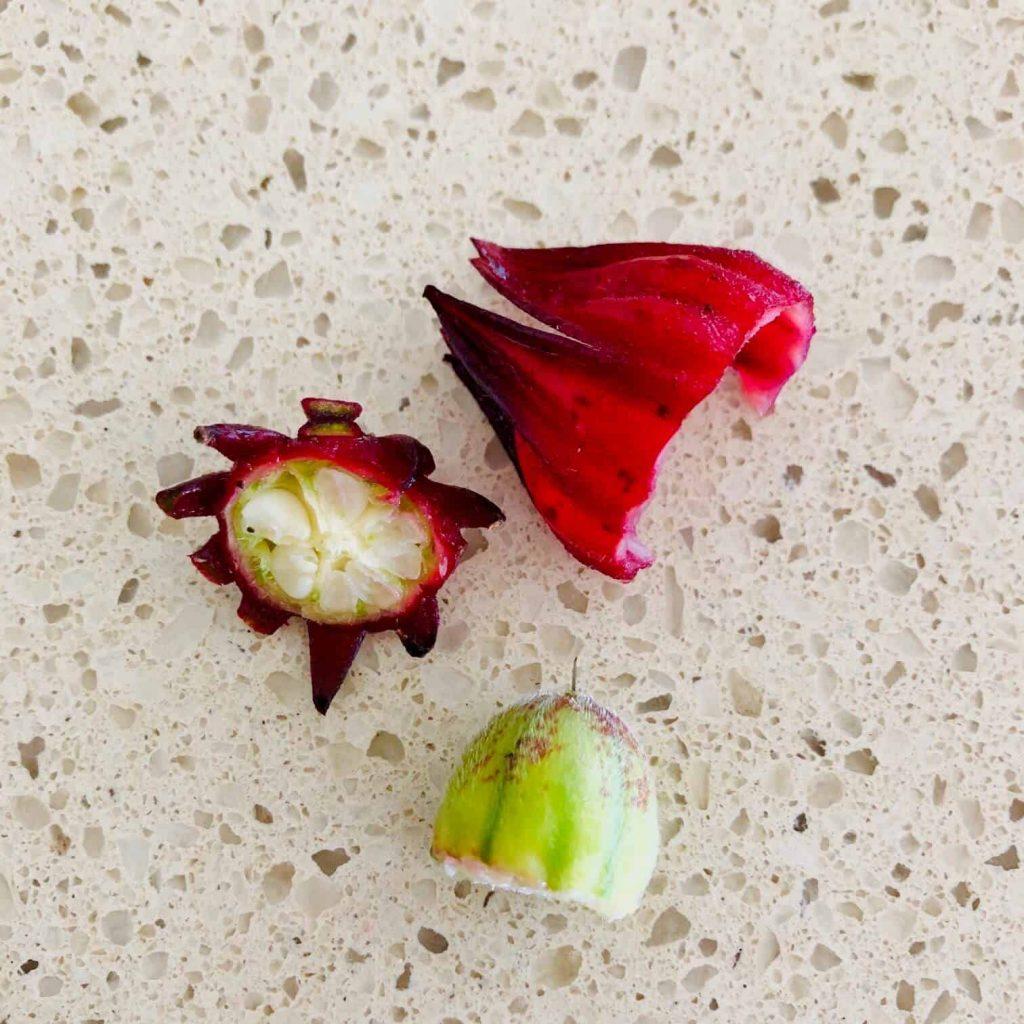 fresh rosella