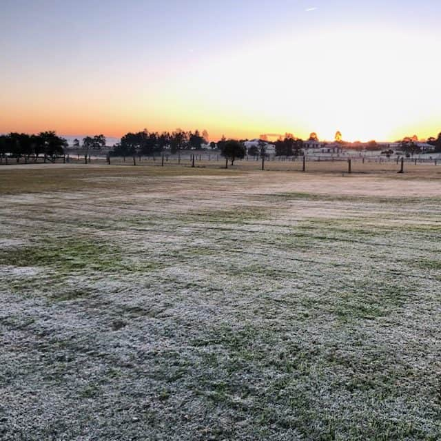 frost morning