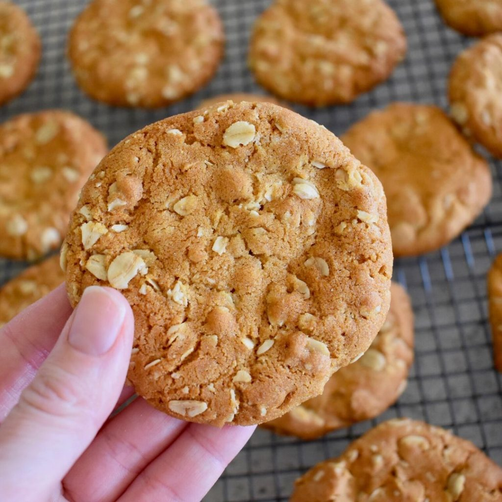 anzac biscuit close up