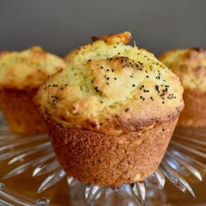 orange and poppy seed muffin