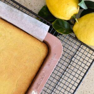 lemon slice biscuit base